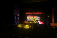 LED Wall + DeLorean